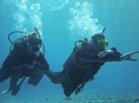 padi-under-water-navigation-specialIty